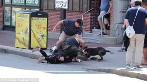 Guarda la versione ingrandita di VIDEO YOUTUBE Il terribile attacco del pit bull al cucciolo di beagle