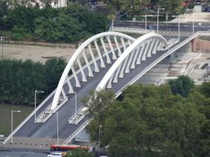 Roma, tenta suicidio dal Ponte della Musica e trascina gli agenti con sé