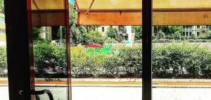 Genova, un parco avventura e nuovi ristoranti nel quartiere Albaro