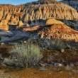 T-Rex, nuovi resti di dinosauro trovati a Hell Creek 5