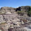 T-Rex, nuovi resti di dinosauro trovati a Hell Creek 6