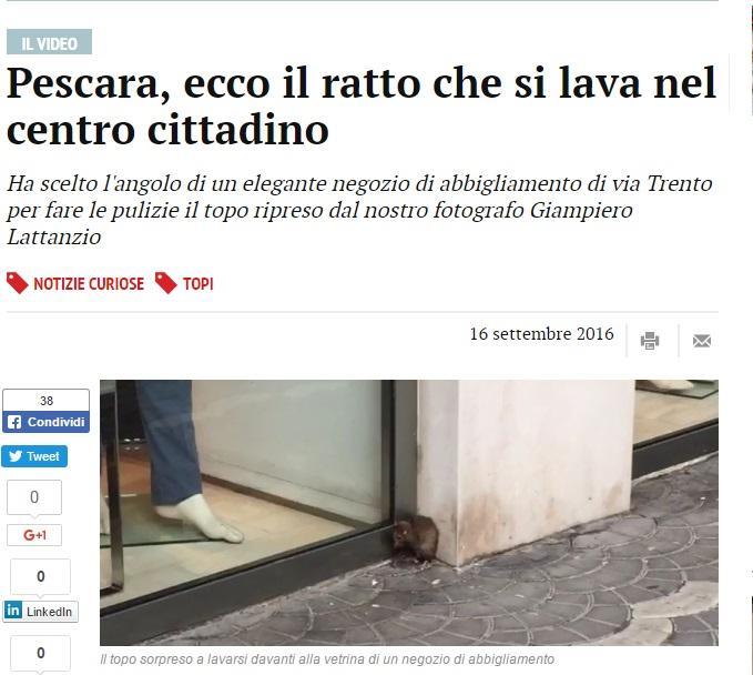 Topo si lava proprio...nel centro di Pescara FOTO