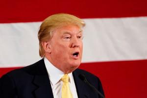 Guarda la versione ingrandita di Donald Trump