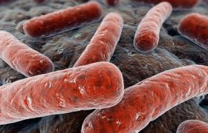 Guarda la versione ingrandita di Trieste: pediatra malata di tubercolosi, richiamati 3500 bambini