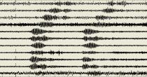 Terremoto Napoli? No, è urlo Champions al San Paolo. I sismografi… FOTO