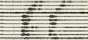 Terremoto Napoli? No, è urlo Champions al San Paolo. I sismografi... FOTO