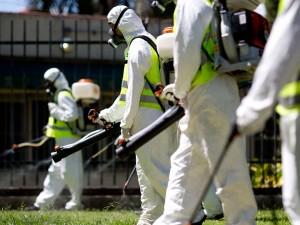 Virus Zika, un caso a Pistoia: disposta la disinfestazione anti-zanzare
