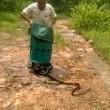 """India, libera 285 serpenti nella foresta: """"Sono nostri amici""""3"""
