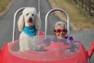 Tumore a 90 anni, anziché curarsi viaggia per un anno e muore