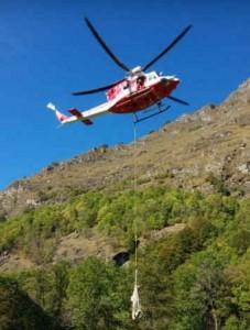 Usseglio, gregge di 50 pecore salvato con elicottero