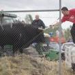 Spagna, tori provocati e infilzati dalle auto6
