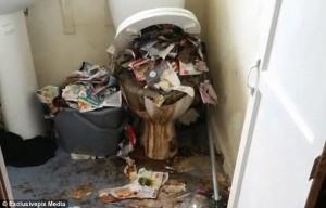 """Water usato come cestino dei rifiuti: """"casa degli orrori"""" a Liverpool"""