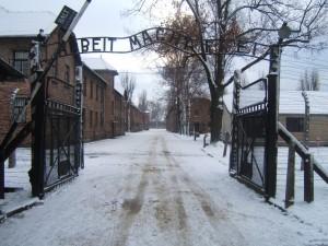 Guarda la versione ingrandita di Viaggio della memoria ad Auschwitz: Trenitalia non dà il treno