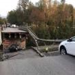 Milano-Lecco: crolla cavalcavia su statale 36, tir finisce su auto: un morto4