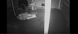 Ladro entra nella scuola dal soffitto: cade a terra e si solca la caviglia