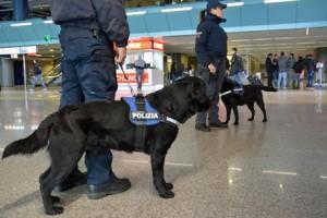 Ciampino, allarme bomba in aeroporto: granata senza polvere in un pacco