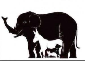 Guarda la versione ingrandita di Quanti animali vedi? Illusione ottica fa impazzire gli utenti sul web FOTO