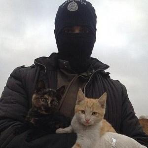 Isis stermina anche i gatti: fatwa contro chi li possiede
