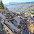 Terremoto 30 ottobre54