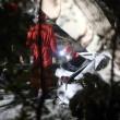 """Milano-Lecco, crolla cavalcavia, cantoniere Tindaro Sauta: """"Leggerezza della Provincia"""" FOTO 2"""