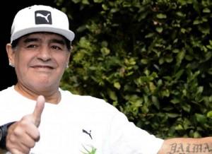 Guarda la versione ingrandita di Maradona: