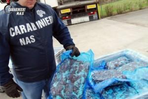 Guarda la versione ingrandita di VIDEO 40mila kg di cibo avariato a Bologna e in Romagna
