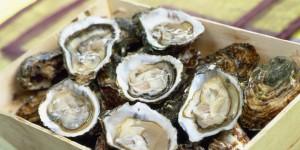 Anziana invalida dopo avvelenamento da ostriche: risarcimento da 400mila euro