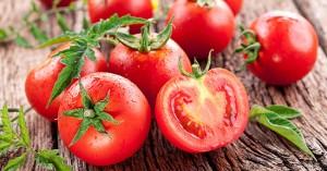 Pomodori non vanno in frigo. Uno studio spiega perché
