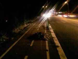 Roma: ciclista travolto e ucciso sulla pista ciclabile da camion dei rifiuti