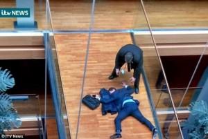 YOUTUBE Steven Woolfe a terra dopo l'aggressione al Parlamento Ue