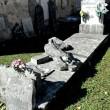 Terremoto 30 ottobre, a Castelsantangelo bare escono da loculi1