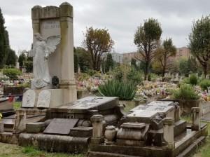Il mistero della gattara del cimitero di Trieste: fu un malore? O un maniaco? O...