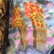 11 settembre, magliette con immagini attentati su bancarella FOTO01