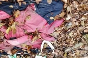 Udine: cerca funghi nel bosco, trova poliziotto morto