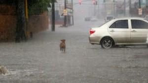 """Uragano Matthew, governatore Florida: """"Scappate o vi ucciderà"""""""