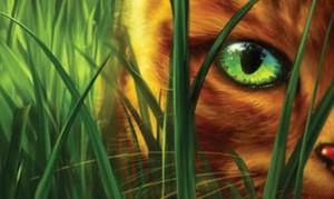 Warriors, film su gatti guerrieri sarà prodotto da David Heyman