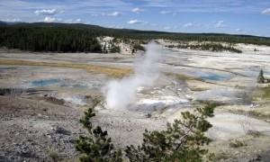 Yellowstone, cade nel geyser: corpo completamente dissolto