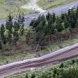 Allerta tsunami a Chirstchurch l'inquietante suono della sirena9