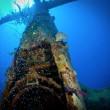 Cimitero sottomarino degli aerei della seconda guerra mondiale 3