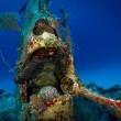Cimitero sottomarino degli aerei della seconda guerra mondiale 7