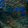 Cimitero sottomarino degli aerei della seconda guerra mondiale 6