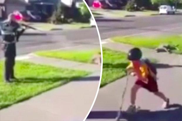 Poliziotto spara e uccide canguro per strada davanti ai bambini2