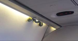 Serpente spunta in cabina piloti atterraggio d'emergenza3