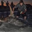 Squalo martello da 3,85 metri pescato a Perth Il più grande del mondo4