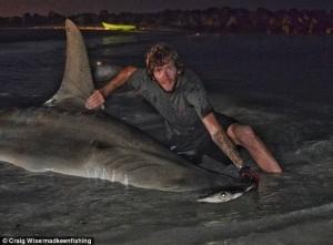 Squalo martello da 3,85 metri pescato a Perth Il più grande del mondo7