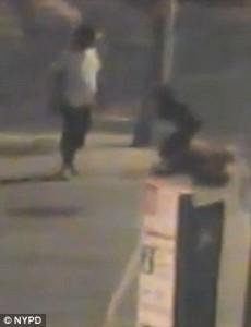 Ucciso in strada con un pugno. Prima di essere colpito si era scusato con l'aggressore6