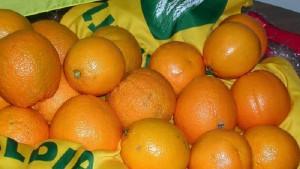 Guarda la versione ingrandita di Raffreddore sorpresa: antibiotici dannosi e vitamina C inutile (foto Ansa)