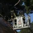 Roma: a fuoco auditorium mai aperto, 10 anni per costruirlo3