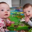 Nate insieme, ma non sono gemelle: lo strano caso a Brisbane03