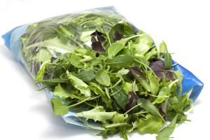 Guarda la versione ingrandita di Salmonella, allarme insalate in busta: le foglie danneggiate...